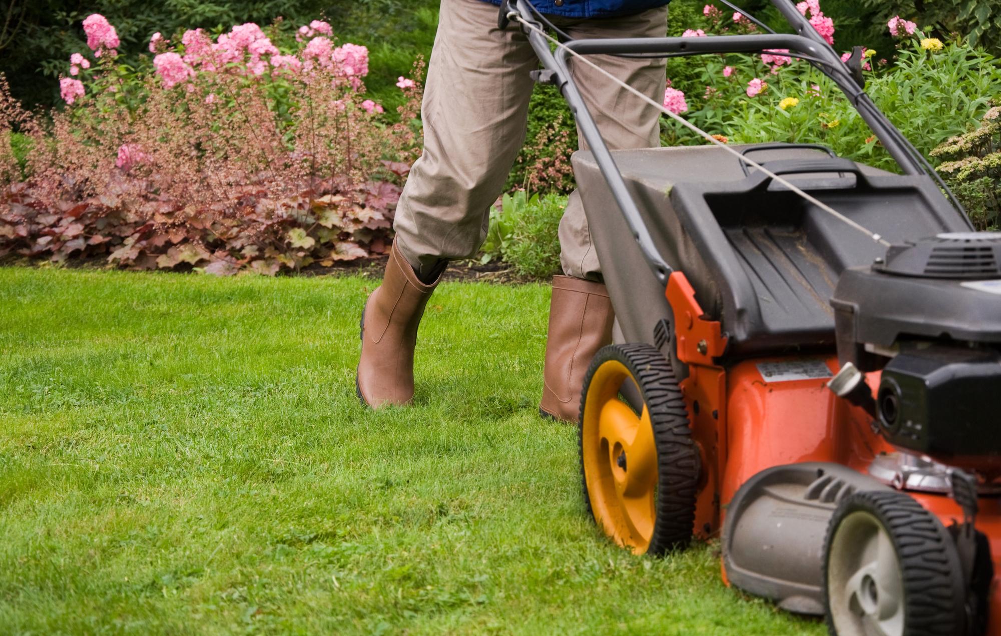 Spring Lawn Maintenance Toronto